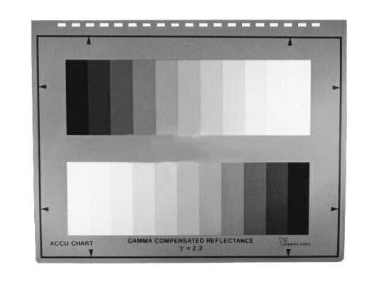 grey scale.jpg