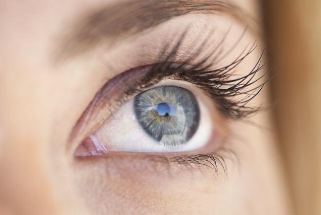 25-Eye.jpg