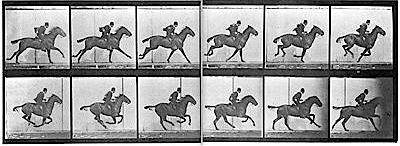 09-Muybridge_horse_gallop.jpg